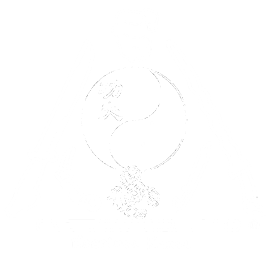 Escrima Kamao Eilenburg Wurzen Sachsen Verein